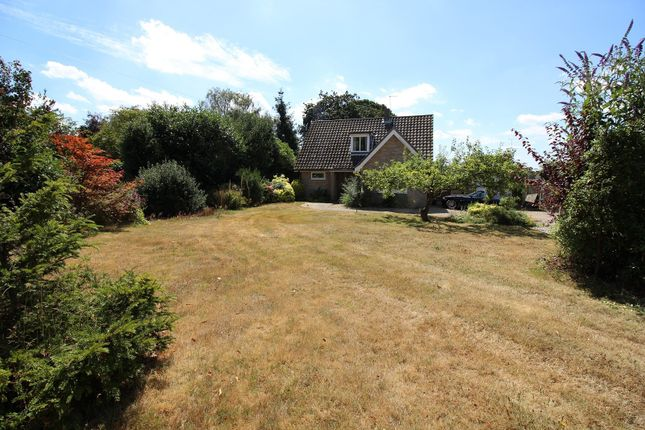 Thumbnail Property for sale in Old Road, Acle, Norwich