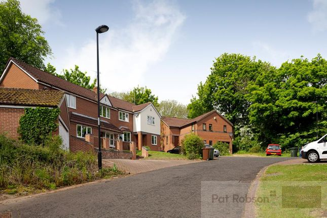 Thumbnail Detached house to rent in Mill Rise, Haddricks Mill Road, South Gosforth