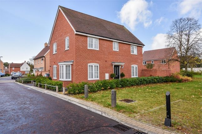 Thumbnail Detached house for sale in Cinder Street, Colchester, Essex