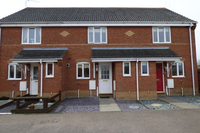 Thumbnail Terraced house to rent in 37 Howley Gardens, Parkhill, Lowestoft