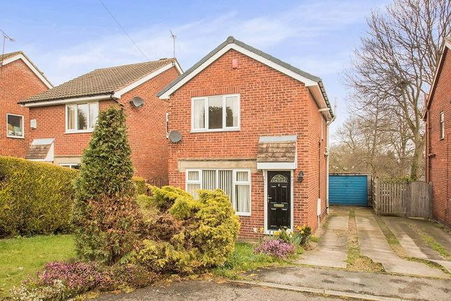 Thumbnail Detached house to rent in Daffil Avenue, Churwell, Morley, Leeds