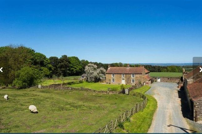 Thumbnail Detached house to rent in Gilling East, York