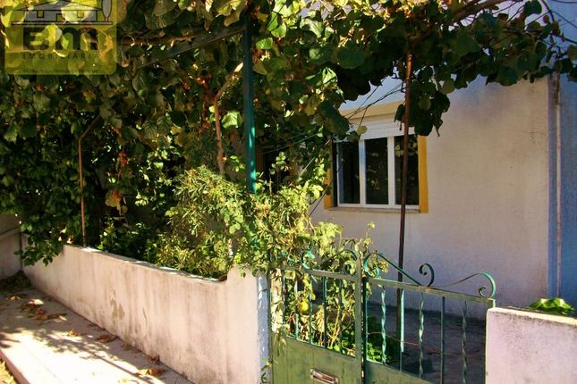 Thumbnail Detached house for sale in Centro (Castelo Branco), Castelo Branco, Castelo Branco