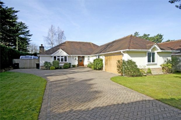Thumbnail Detached bungalow for sale in Ashley Heath, Ringwood, Hampshire
