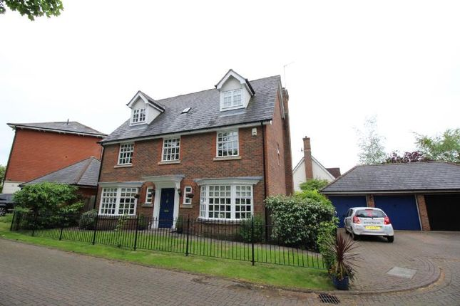 Thumbnail Detached house to rent in Bronte Close, Winwick, Warrington