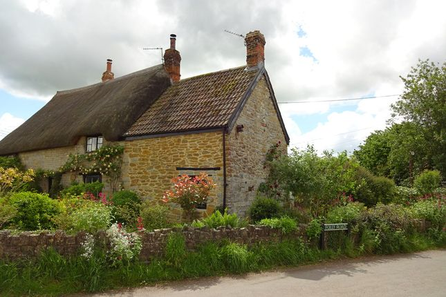 Thumbnail Cottage to rent in Kingsbury Episcopi, Martock