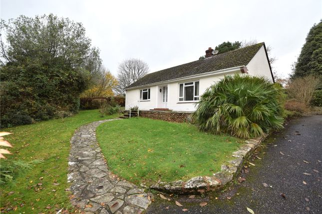 2 bed bungalow to rent in Toadpit Lane, West Hill, Ottery St. Mary EX11