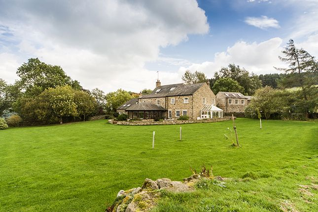 Thumbnail Country house for sale in Lanehead, Allendale, Northumberland