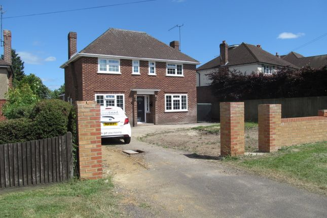 Thumbnail Detached house to rent in Elm Road, Reading