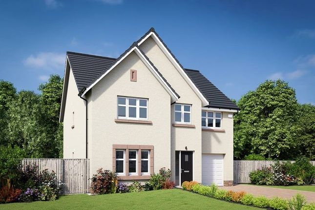 "Thumbnail Detached house for sale in ""The Crichton"" at Edinburgh Road, Belhaven, Dunbar"