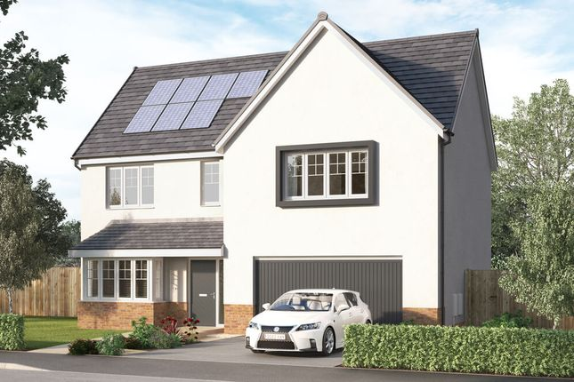 """Thumbnail Detached house for sale in """"The Trewbrook"""" at Aurs Road, Barrhead, Glasgow"""