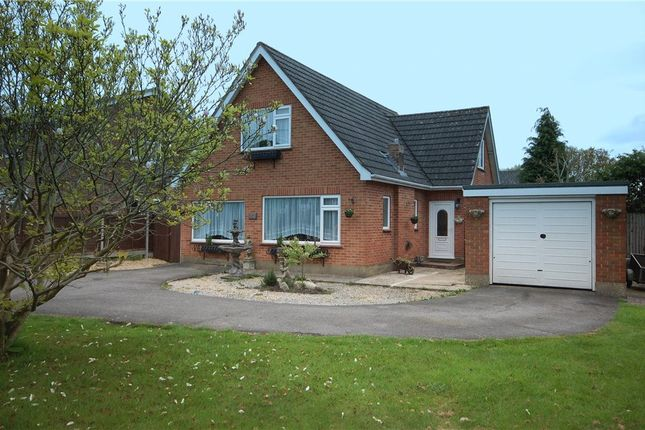 Thumbnail Detached bungalow for sale in Gladelands Park, Ringwood Road, Ferndown