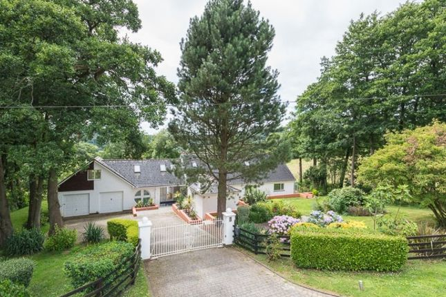 Thumbnail Bungalow for sale in Maendy Fach, Lower Machen, Newport, Newport.