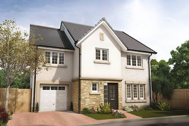 "Thumbnail Detached house for sale in ""Bryce Detached"" at Penicuik Road, Roslin"