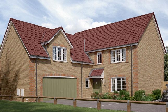 "Thumbnail Detached house for sale in ""The Langham"" at Walker Drive, Stamford Bridge, York"