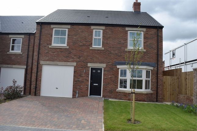 Thumbnail Detached house to rent in Acorn Close, Newcastle Upon Tyne, Tyne And Wear