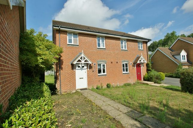Thumbnail Semi-detached house to rent in Squirrel Lane, Ashford