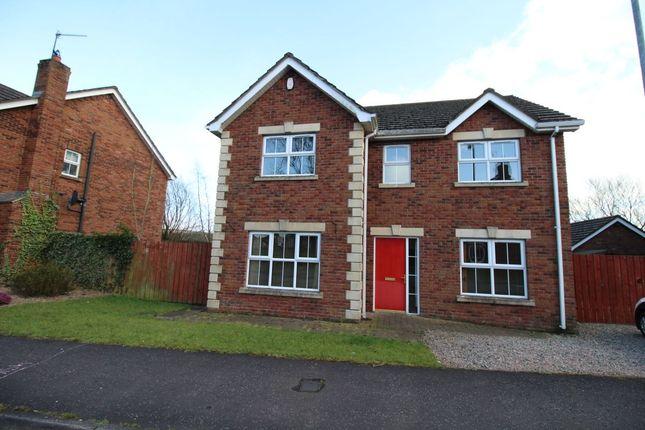Thumbnail Detached house to rent in Stonebridge Meadows, Lisburn
