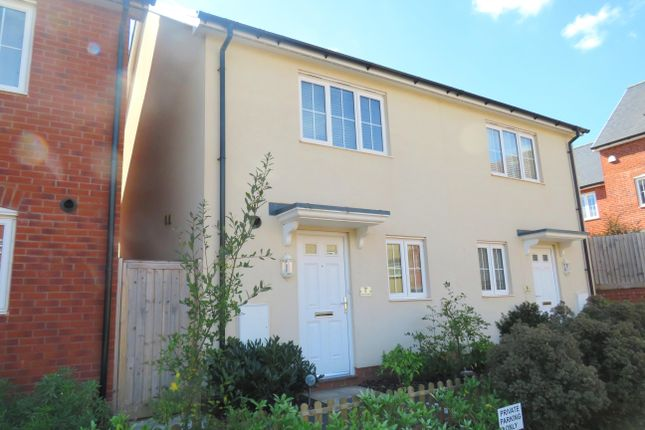 Thumbnail Property to rent in Harris Place, Exeter