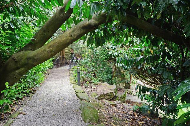 Pathways of Rivendell, Derriman Glen, Ecclesall, Sheffield S11