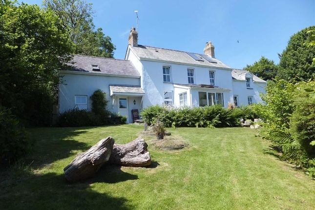 Thumbnail Detached house for sale in Hebron, Whitland