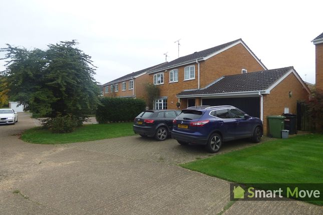 Thumbnail Detached house to rent in Dunsberry, Bretton, Peterborough, Cambridgeshire.