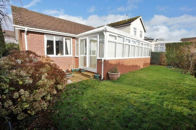 Thumbnail Bungalow for sale in Bridle Close, Paignton