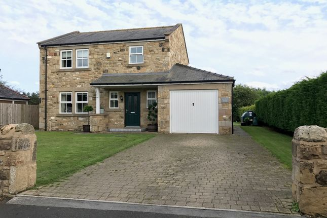 Thumbnail Detached house for sale in Felton, Morpeth