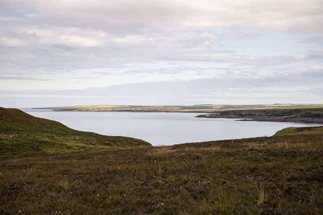 Land for sale in Dunnet Head Estate, Caithness, Dunnet KW14