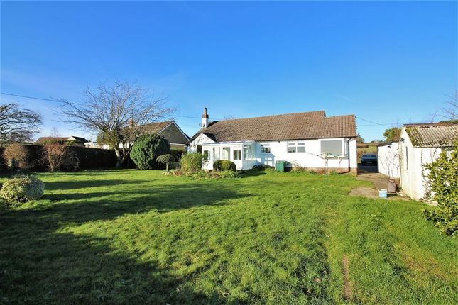 Thumbnail Detached bungalow to rent in Hastings, Ashill, Nr Ilminster