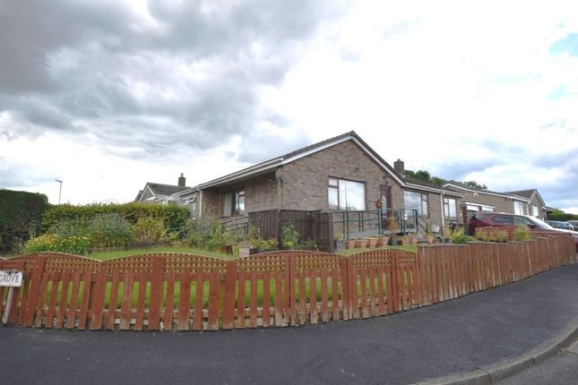 Thumbnail Bungalow for sale in Thornlea Grove, Lanchester, Durham
