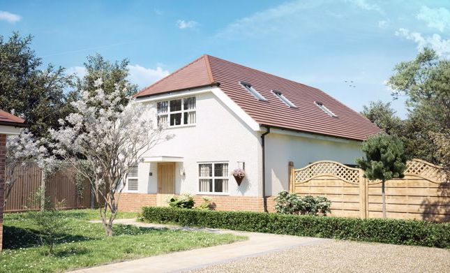 Thumbnail Detached house for sale in The Hollies, Horsemere Green Lane, Climping