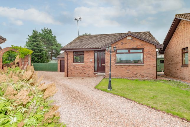 Thumbnail Detached bungalow for sale in Carse View, Airth