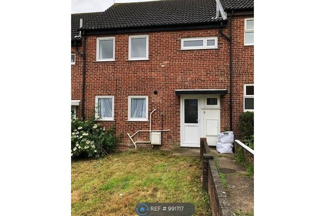 Thumbnail Terraced house to rent in Charles Pell Road, Colchester