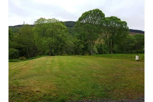 The Plot of Milton, Drumnadrochit IV63