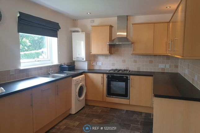 Thumbnail Flat to rent in Speirs Court, Brightons, Falkirk