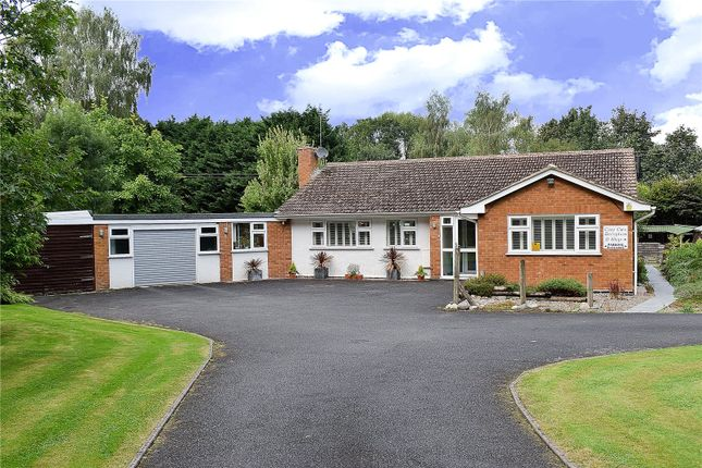 Thumbnail Bungalow for sale in Dark Lane, Hallow, Worcester