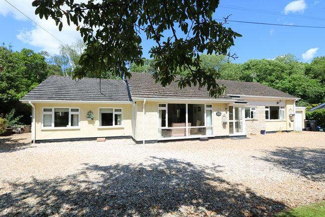 Thumbnail Detached bungalow for sale in Bridge Place Road, Camerton, Bath