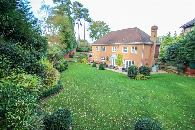 Thumbnail Detached house for sale in Rawdon Rise, Camberley, Surrey