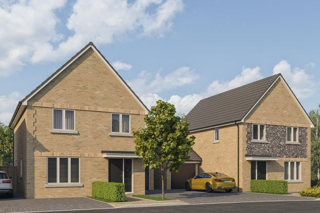 Thumbnail Detached house for sale in Cinders Lane, Yapton