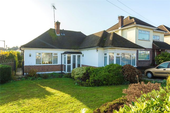 Thumbnail Detached bungalow for sale in Burses Way, Hutton, Brentwood, Essex