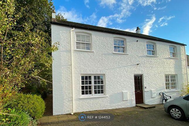 Thumbnail Flat to rent in Gatehouse Of Fleet, Castle Douglas