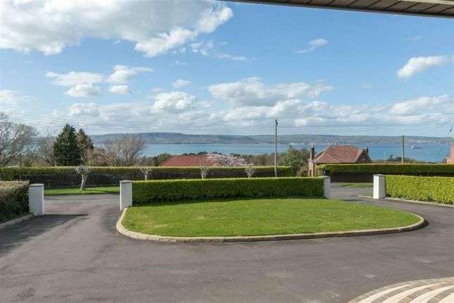 Thumbnail Detached bungalow for sale in Larch Hill, Holywood