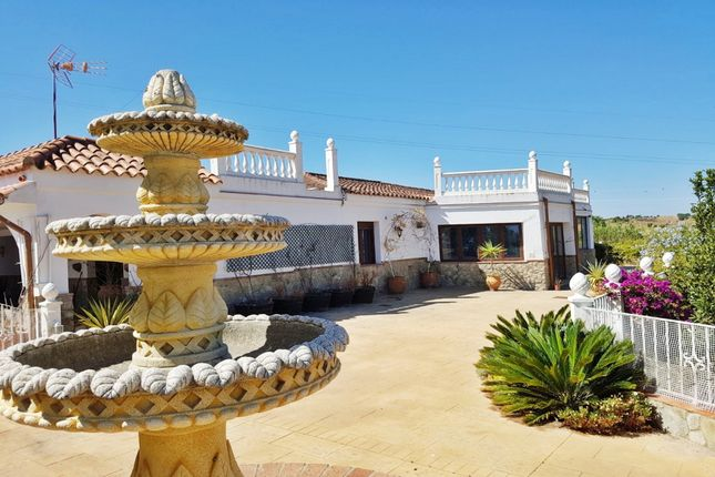 Finca for sale in Medina Sidonia, Medina-Sidonia, Cádiz, Andalusia, Spain