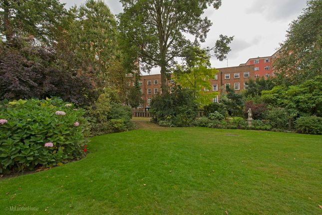 Picture 13 of Moncorvo Close, Knightsbridge, London SW7