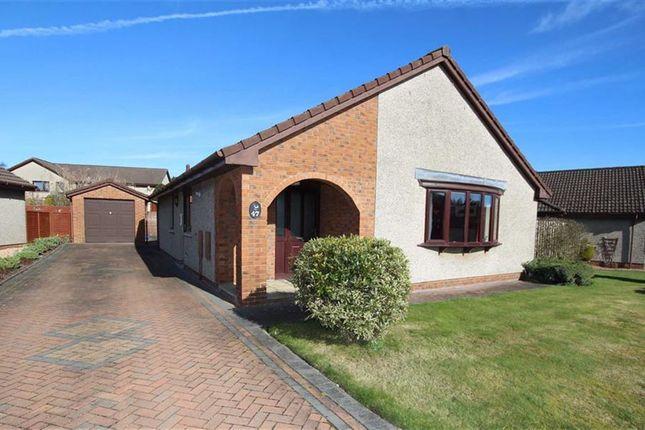 Thumbnail Detached bungalow for sale in 47, Edenbank Road, Cupar, Fife