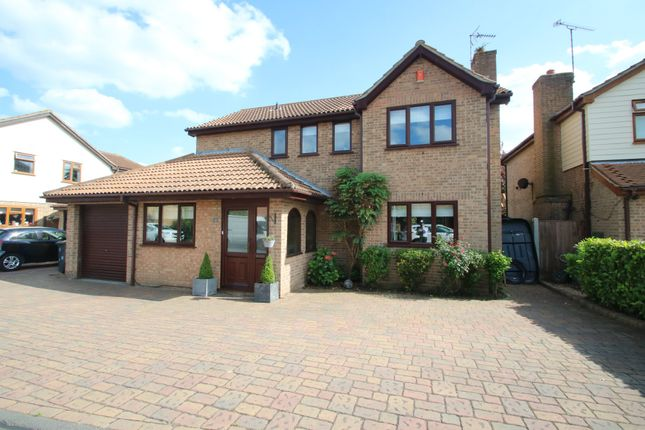 Thumbnail Detached house for sale in Ducketts Mead, Canewdon, Rochford