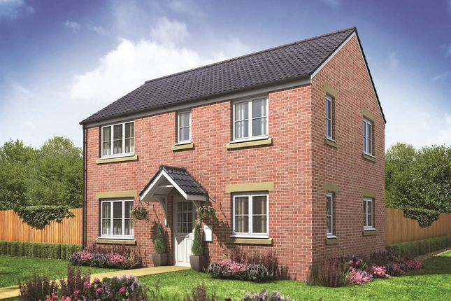 "Thumbnail Detached house for sale in ""The Clayton Corner"" at Buttermilk Close, Pembroke"