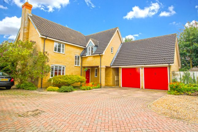 Thumbnail Detached house for sale in Wood Avens Way, Wymondham