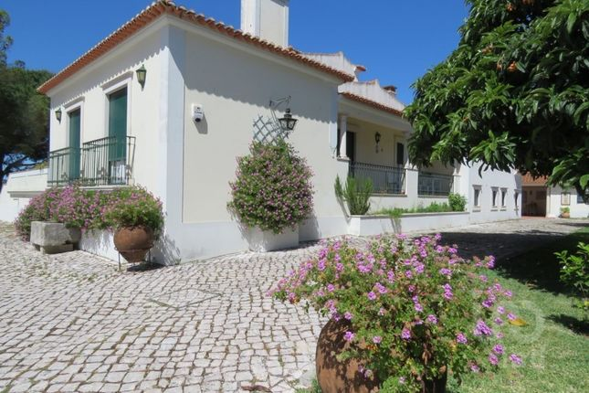Thumbnail Chalet for sale in Óbidos, 2510 Óbidos Municipality, Portugal